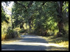 Alisal Road in Santa Barbara County. A pretty Central California back road just south of Solvang.