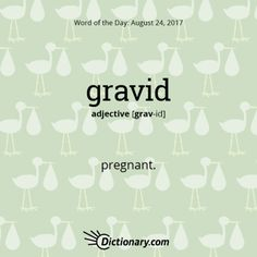 gravid - Word of the Day | Dictionary.com