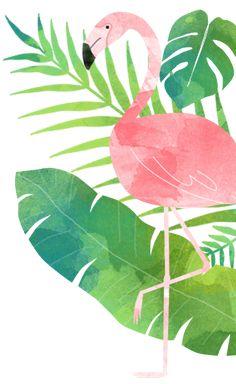 I love flamingos! Flamingo Wallpaper, Flamingo Art, Pink Flamingos, Cute Wallpapers, Wallpaper Backgrounds, Iphone Wallpaper, Thema Hawaii, Summer Painting, Tropical Party