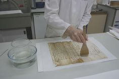 A conservator resizing a document with gelatine