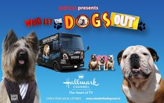 Its fun to see Tillman and Norman the Scooter Dog on banners for Who Let the Dogs Out on Hallmark Channel.