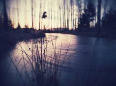 Sunrise by a frozen pond #1/10