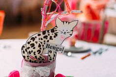 Cat Themed Wedding in Brighton