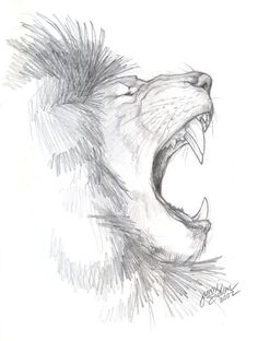 African Lion Sketch by Emryswolf.deviantart.com on @deviantART Pencil Art Drawings, Art Drawings Sketches, Cute Drawings, Animal Sketches, Animal Drawings, Profile Drawing, Lion Profile, Lion Sketch, Lion Tattoo Design