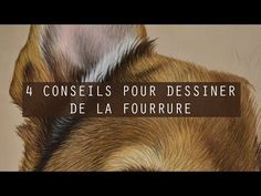 4 conseils pour dessiner de la FOURRURE - Close To Art - YouTube