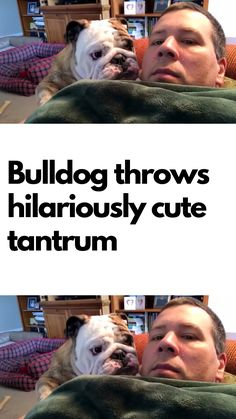 This adorable tantrum is just incredibly cute! Funny Animal Memes, Funny Animals, Funny Quotes, Funny Memes, Hilarious, Baby Animals, English Bulldog Funny, Jokes About Men, Amazing Things