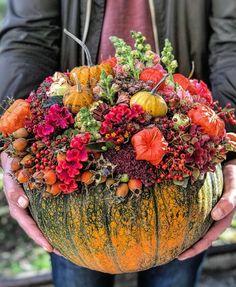fun with natural planters! We love the succulents chosen! Fall fun with natural planters! We love the succulents chosen! Fall Flowers, Diy Flowers, Pumpkin Bouquet, Fall Flower Arrangements, Pumpkin Colors, Sympathy Flowers, Deco Floral, Painted Pumpkins, Pumpkin Decorating