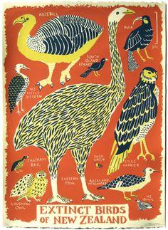 Extinct Birds of New Zealand Caleb Luke Lin 3 Layer Screenprint on Stongehenge Art And Illustration, Illustrations Posters, Vintage Bird Illustration, Extinct Birds, Arte Popular, Bird Art, Pet Birds, Illustrators, Graphic Art