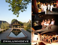 dagje wellness en sauna in de zwaluwhoeve Sauna, Wellness, City, Beautiful, City Drawing, Cities