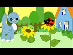 Zeichentrick auf YouTube mit Kätzchen Molli-Miez vom Katzen-Kabinett Usedom