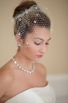 Birdcage Veil French Veiling with Dots Blusher by AnnLeslie