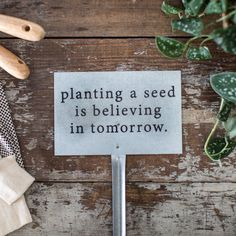 """""""Planting a Seed"""" Garden Stake"""