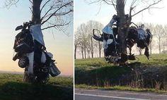 Közlekedés: Szürreális baleset Értarcsánál, a fán lógott az összetört autó - HVG.hu