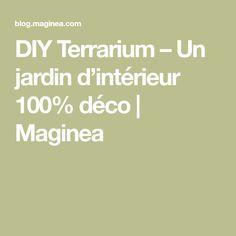 DIY Terrarium – Un jardin d'intérieur 100% déco | Maginea