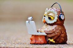 Lehetőség a kiszámítható, jobb jövődért! http://otthoni.netuzlet.ws/?