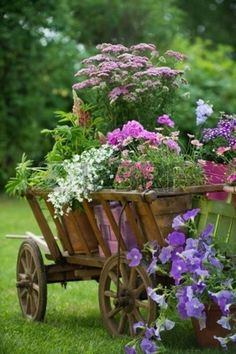 Container Gardening Ideas Flower Pots grouped together in a wood wheelbarrow - beautiful! - Enjoy nonstop color all season long with these container gardening ideas and plant suggestions. You'll find beautiful pots to adorn porches and patios. Flower Pots, Plants, Vintage Garden, Cottage Garden, Beautiful Flowers, Wooden Flowers, Garden Containers, Garden Landscaping, Beautiful Gardens