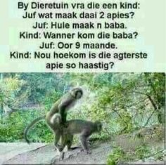 Goeie Nag, Afrikaans Quotes, Funny Pictures, Funny Pics, Funny Quotes, Jokes, Sayings, Funny Phrases, Chistes