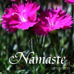 For peace and tranquility inspiration in any room. #namaste #wallart