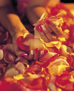 Add some vibrant color to your salon or spa walls with this multicolored poster featuring a handful of rose petals. - $1