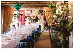 Love blue chairs to brighten up a wedding reception