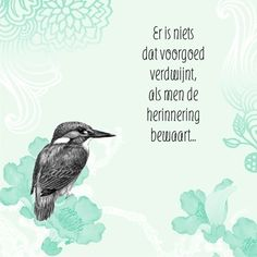 Kaarten - condoleance - herinnering | Hallmark