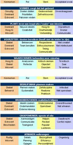 belbin bedrijfsman thesis