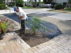 Fort Myers Beach landscape rock yard low maintenance
