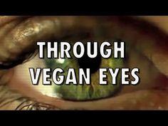 THROUGH VEGAN EYES - YouTube