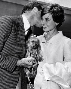 Audrey Hepburn, Hubs, a Puppy and a long Pixie