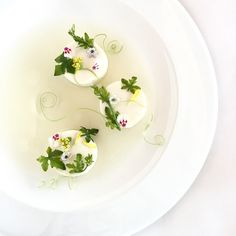 Soya curd with ivy gourd clear soup by royalebrat on instagram #plating