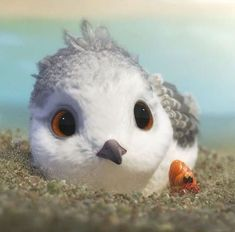 Here's a look at Pixar's Piper, an adorable 6 minute short. Initially released in theaters with Pixar's Finding Dory this past summer, it's now available to view online in f… Pixar Shorts, Disney Shorts, Pixar Movies, Movie Characters, Disney Memes, Disney Pixar, Piper Pixar, Piper Bird, Blue Umbrella