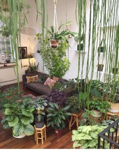 Amazing Indoor Jungle Decorations Tips and Ideas 50 Erstaunliche Indoor-Dschungel-Dekorations-Tipps und Ideen 50 Room With Plants, House Plants Decor, Plant Decor, Plant Rooms, Living Room Decor With Plants, Living Rooms, Plantas Indoor, Jungle Decorations, Garden Decorations