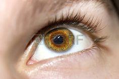 hnědé oči: Obrázek muže hnědé oči zblízka.