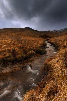 Scotland's Wilderness is Calling