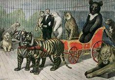 Quand le Jardin d'Acclimatation  devient le Jardin d'Alimentation pendant le siège de Paris (1870-1871) : de l'antilope au casoar, du cygne au dromadaire, et jusqu'à l'éléphant, pas une espèce ne sera épargnée pour nourrir les Parisiens...