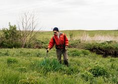Setting Fires and Restoring an American Landscape - The New York Times
