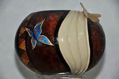 catus fiber gourds - Yahoo Image Search Results