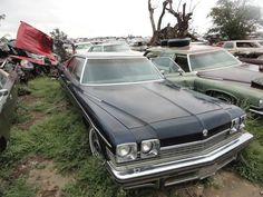 Eastern Colorado bone yard Crash Bash, Demolition Derby, Derby Cars, Barn Finds, Impala, Destruction, Colorado, Yard, Big