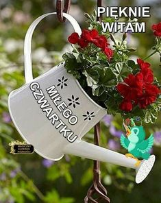 Good Morning Funny, Christmas Ornaments, Holiday Decor, Humor, Floral Arrangements, Fotografia, Good Morning, Flowers, Polish