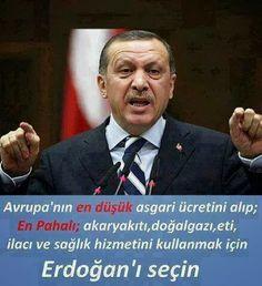 Paket in Erdoğan İslami Dinsel Rejim..! | Link Haber