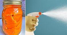 Récupérer des pelures d'orange pour en faire un produit ménager bio! Home Hacks, Drink Bottles, Homemade, Tips, Food, Date, Voici, Ranger, Disney