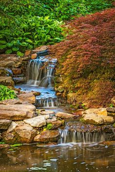 Lush hostas and a Japanese maple line a cascading stream for a tranquil feel. More photos from this garden: http://www.midwestliving.com/garden/featured-gardens/inspirations-from-an-indiana-garden-center/