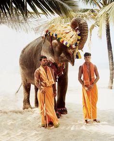 condenasttraveler:    Goa, India
