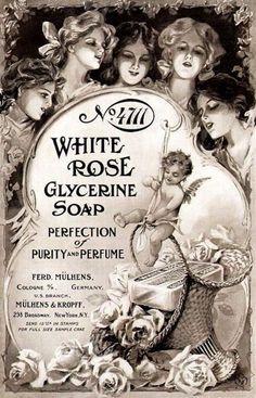 white rose vintage ad