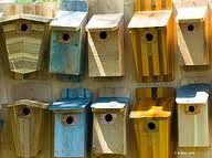 bluebirds --production work (gotta do it).
