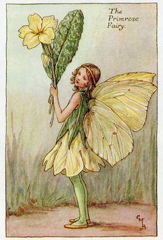 Primrose Flower Fairy Vintage Print c.1927 por FlowerFairyPrints