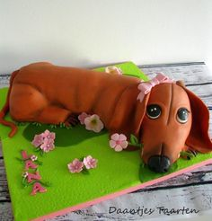 Puppy Love ❤️ - Cake by Daantje Dachshund Cake, Chocolate Dachshund, Dachshund Puppies, Dachshunds, Weiner Dogs, Puppy Dog Cakes, Puppy Cupcakes, Dog Themed Parties, Cake Pictures