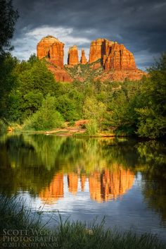 Cathedral Reflection by Scott Wood