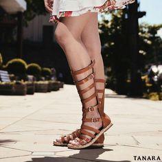 Já fez a listinha de presentes de Natal? Quantos sapatos Tanara estão nela?  #amamosNatal #amamossapatos  Gladiadora ref. N7643   #natalTanara