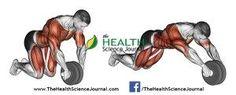 © Sasham | http://Dreamstime.com - Exercising for bodybuilding. Straightening simulator wheel